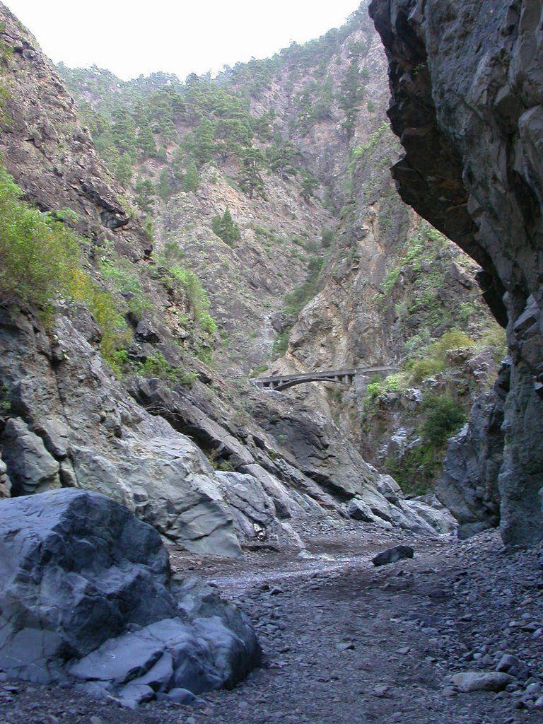 Barranco De Las Angustias La Palma