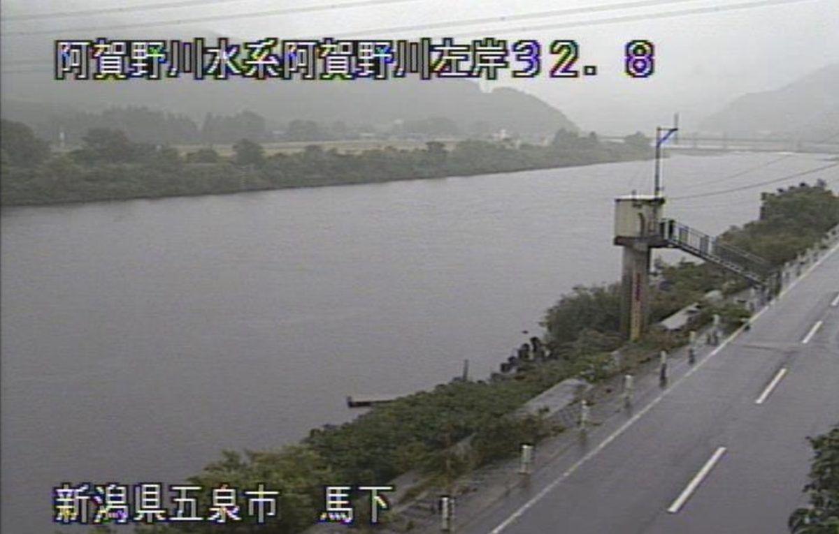 阿賀野 川 ライブ カメラ