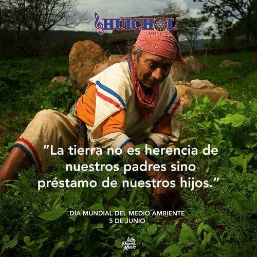 Huichol Huichol Musical Dia Mundial Del Medio Ambiente