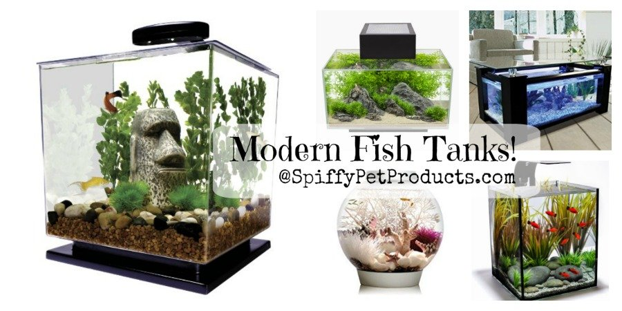 The Ultimate Guide To Modern Contemporary Fish Tanks With Big Style Spiffy Pet Products In 2020 Fish Tank Modern Fish Tank Betta Fish Tank