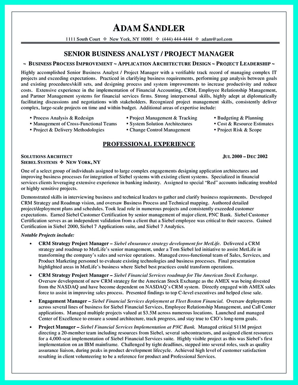 Senior Business Analyst Resume Data Analyst Resume Will Describe Your Professional Profile