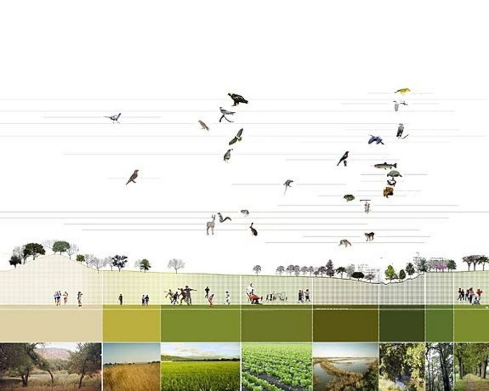 The Best Landscape Plan Drawing Section No 29 — Design & Decorating #landscapeplans