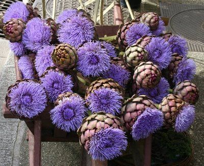 From A Little Lank: March 2012.   Go to entry from 3-12-12  Fun picture for artichoke inspiration....