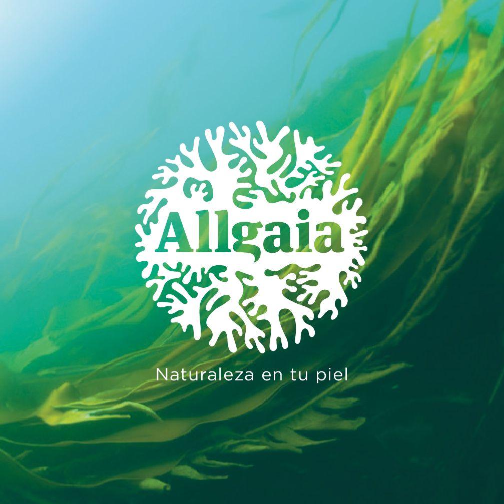 Diseño de identidad para Allgaia, cremas a base de algas. #identidad ...
