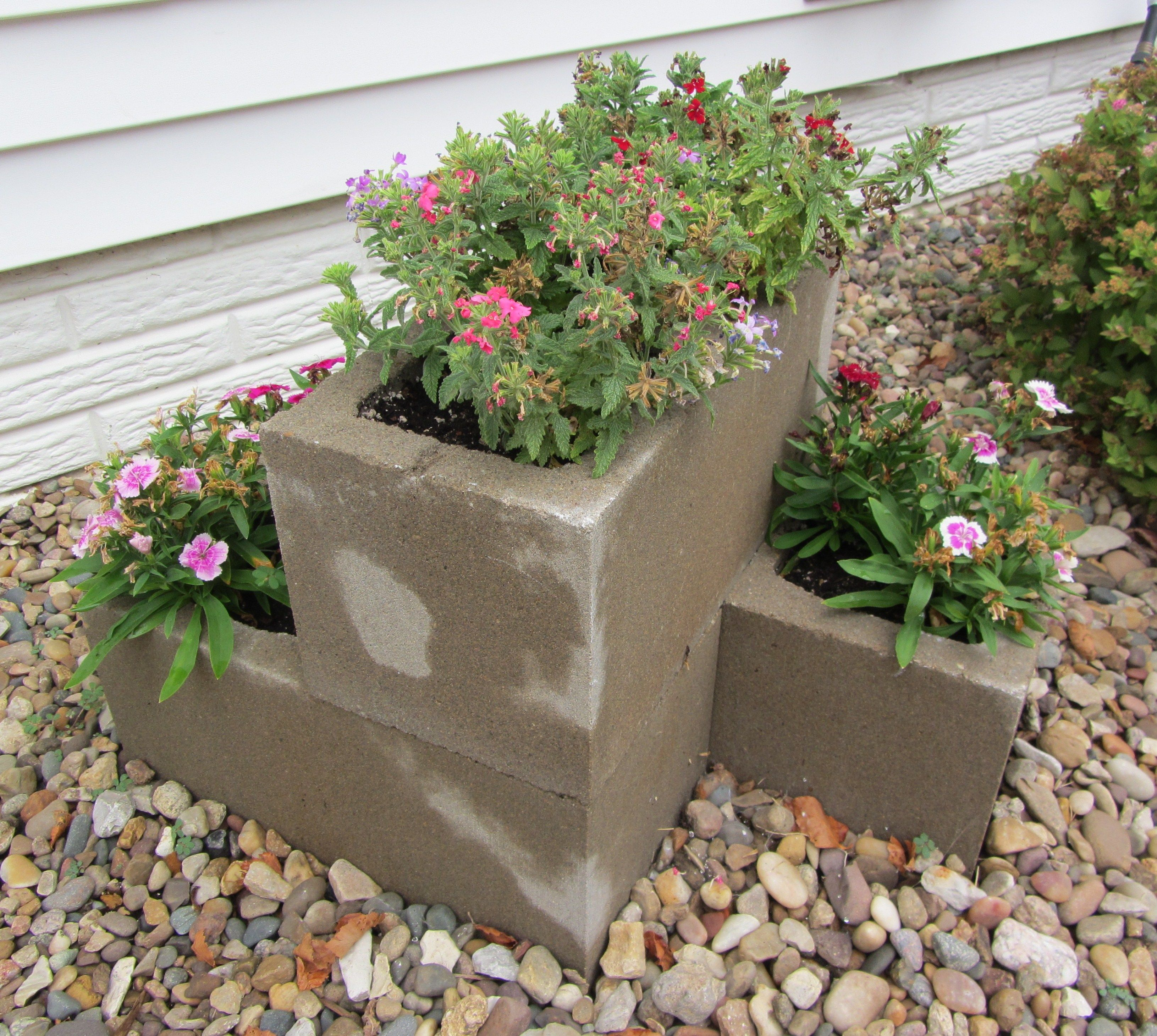 cement block planter garden pinterest garden cinder. Black Bedroom Furniture Sets. Home Design Ideas