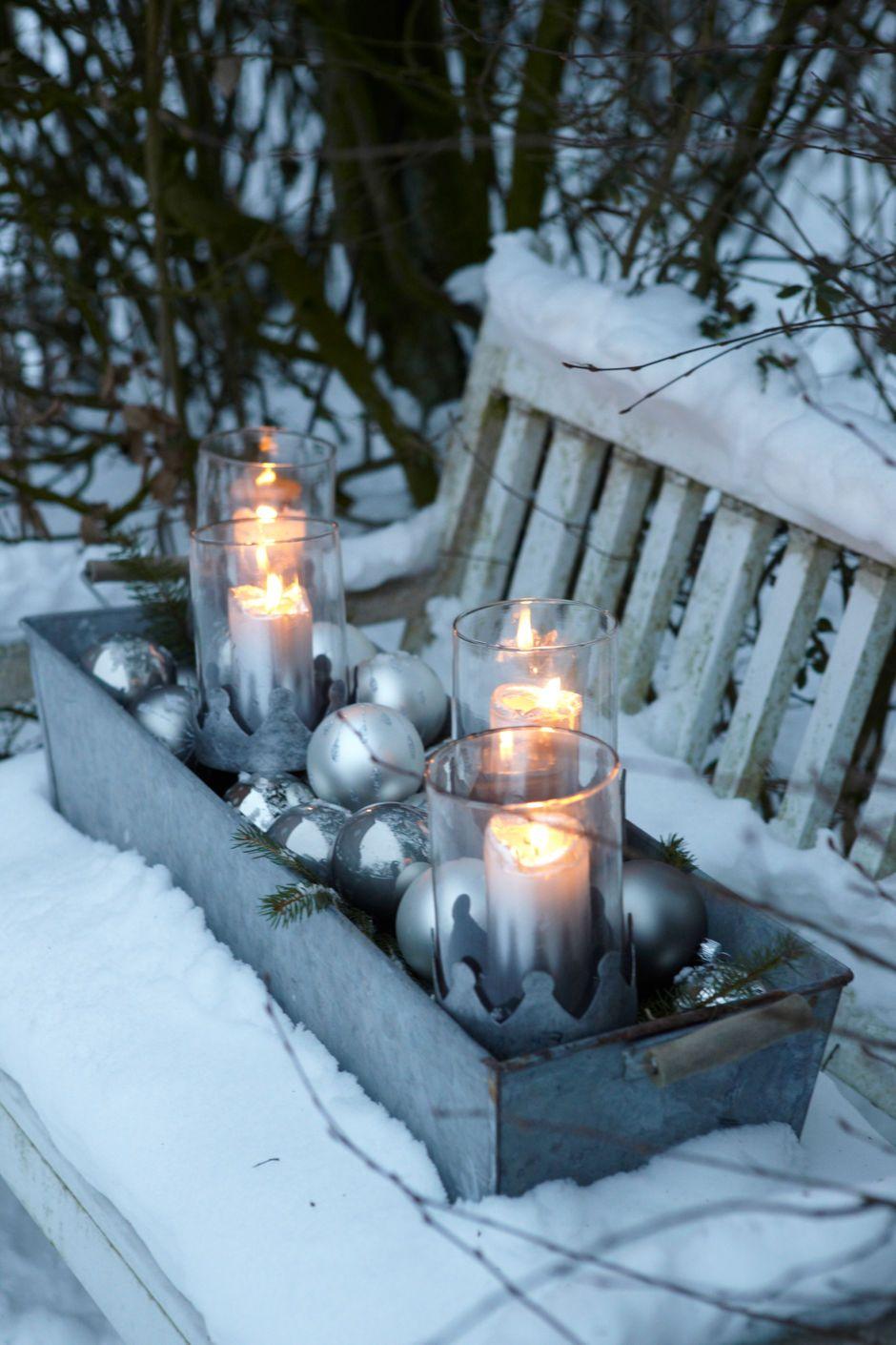 Gartentipps für den Dezember