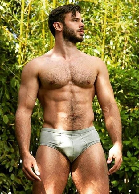 chest hunk Hairy