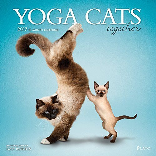 Yoga Cats Together 2017 Square Plato Be Sure To Check Out This Awesome Sponsored Product Cat Yoga Animal Yoga Dog Yoga