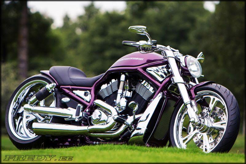 Harley Davidson V Rod Purple By Fredy Harley Davidson Bikes Harley Davidson V Rod Motorcycle