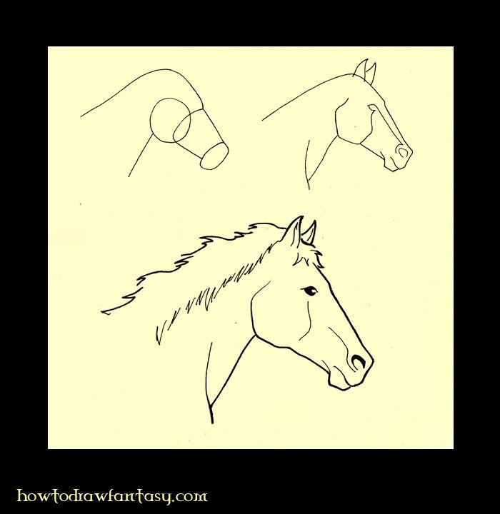 Comment dessiner une tete de cheval de profile art in 2019 drawings horse drawings horse art - Dessiner cheval ...