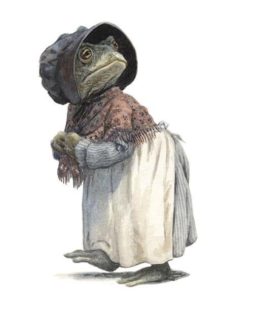 Washerwoman Toad  Chris Dunn