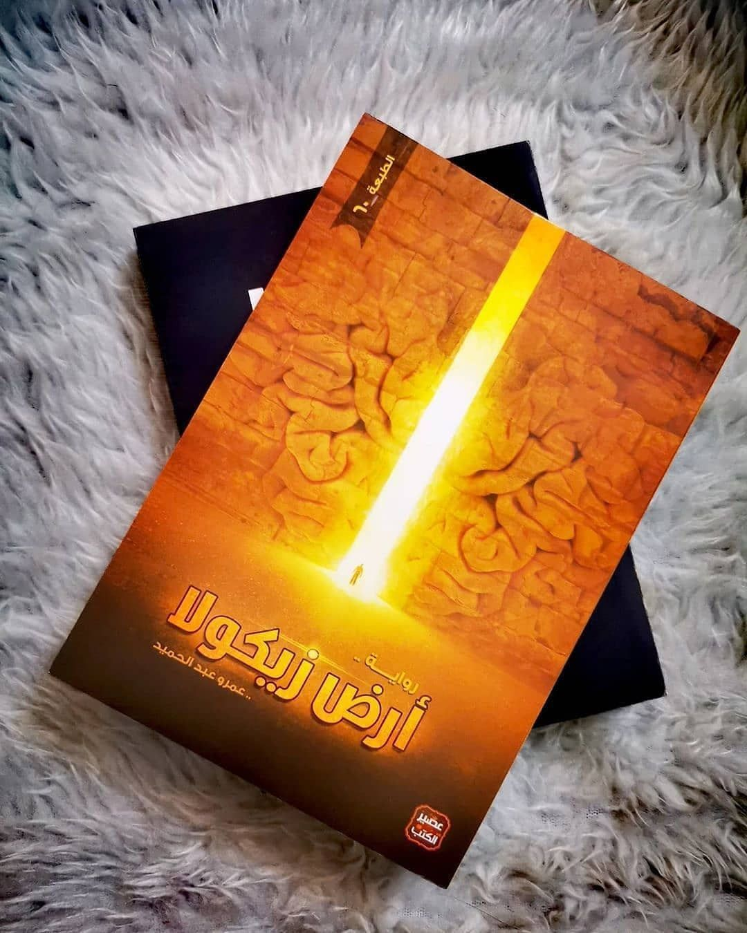 رواية ارض زيكولا عمرو عبد الحميد Book Cover Books Cover
