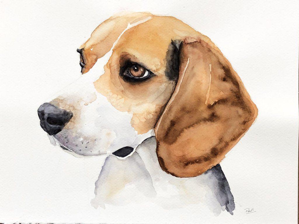 Beagle Watercolour Painting Watercolor Pet Portraits Watercolor Dog