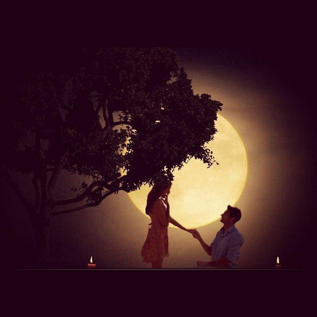 the moonlight | Night scenery, Romantic wallpaper, Moonlight