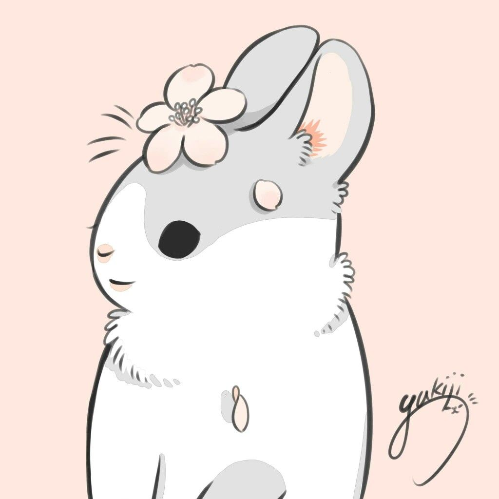 Machiko Rabbit Wallpaper Cute Art Cute Wallpapers