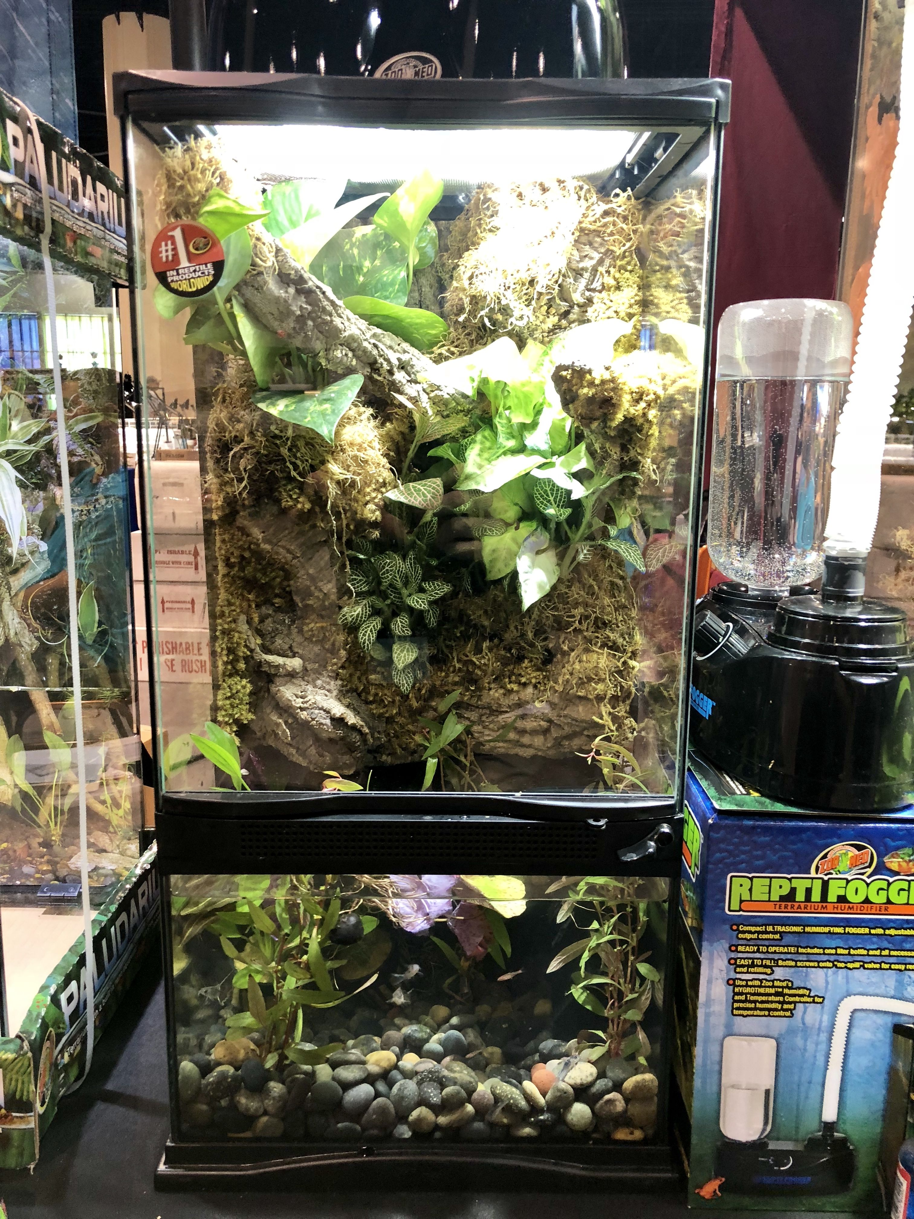 D.I.Y Humidifier Reptile Forums