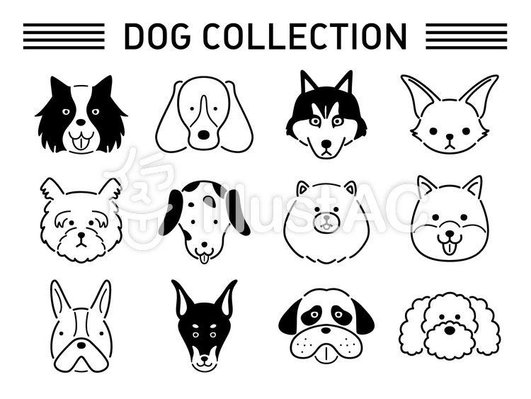 犬の線画イラスト イラスト 無料 イラスト イラストレーション