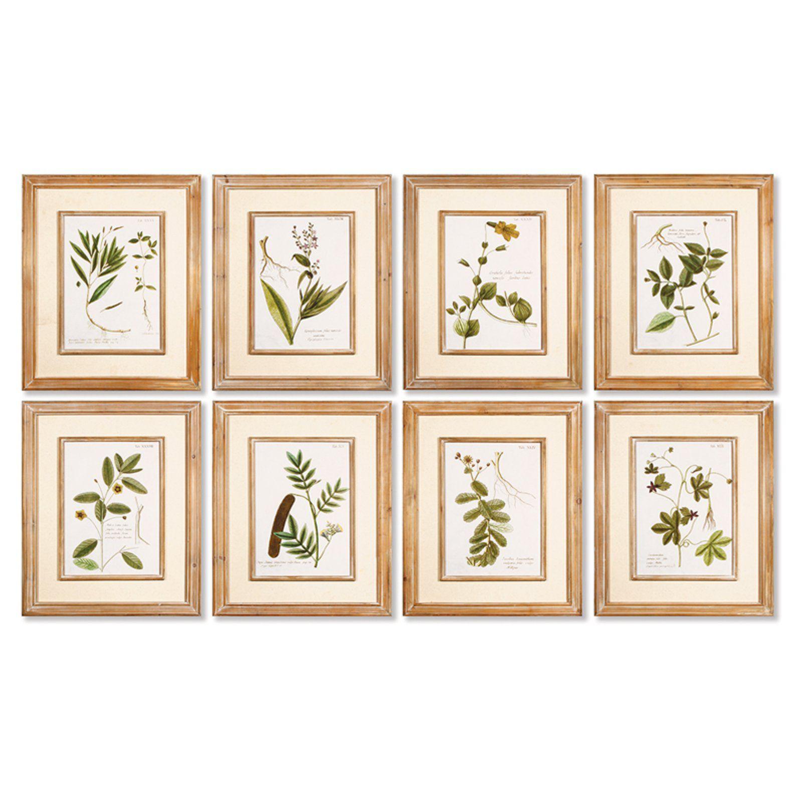 Napa Home and Garden 8 Piece Spring Botanical Print Wall