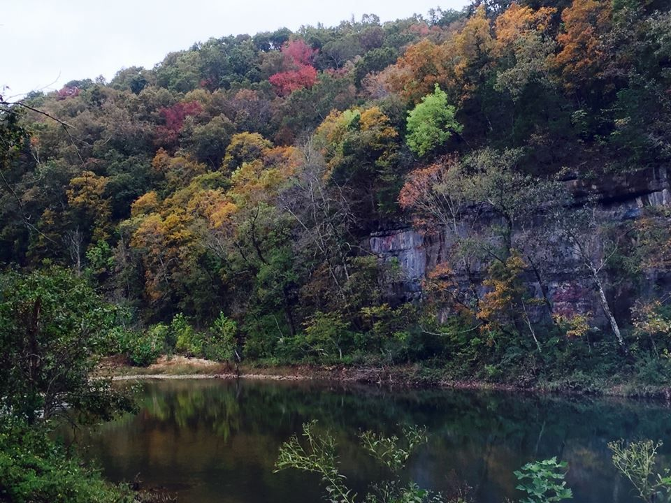 This Magical Hike Through A Missouri Forest Is Unexpectedly Colorful Mark Twain National Forest Fall Foliage Road Trips Arkansas Vacations