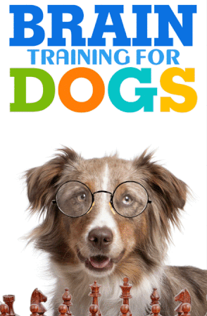 Brain Training For Dogs Review – Does Adrienne's Program Really Work? |  Training your dog, Dog brain, Dog training