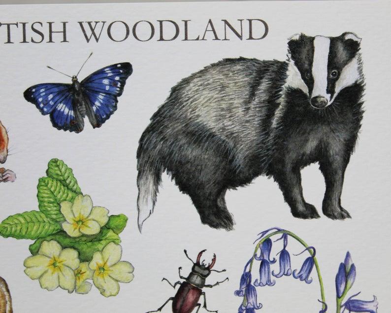 British Woodland Greeting Card Birthday Card Thank You Etsy Birthday Greeting Cards Birthday Cards Cards