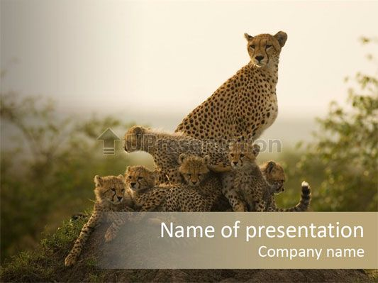 Eco Tourism Relax Powerpoint Template Free Templates For