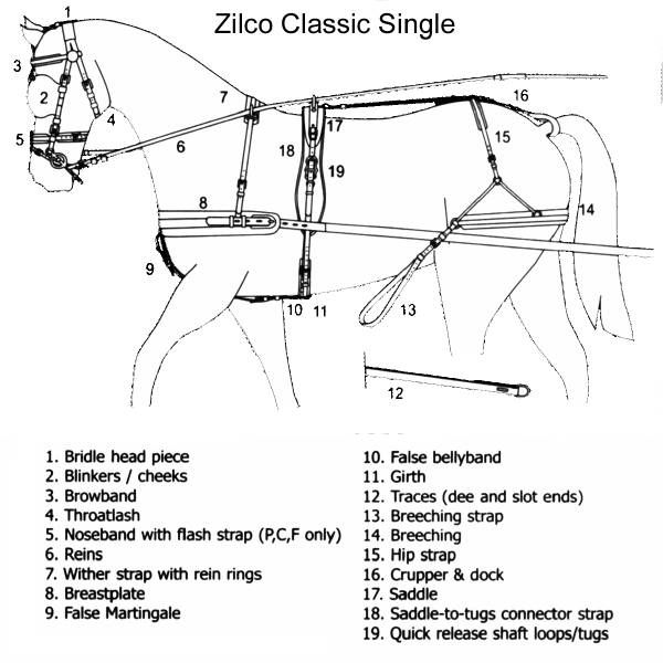 horse harness parts diagram - Yahoo Search Results | Horse harness, Horse  wagon, Mini horse | Work Horse Harness Diagram |  | Pinterest