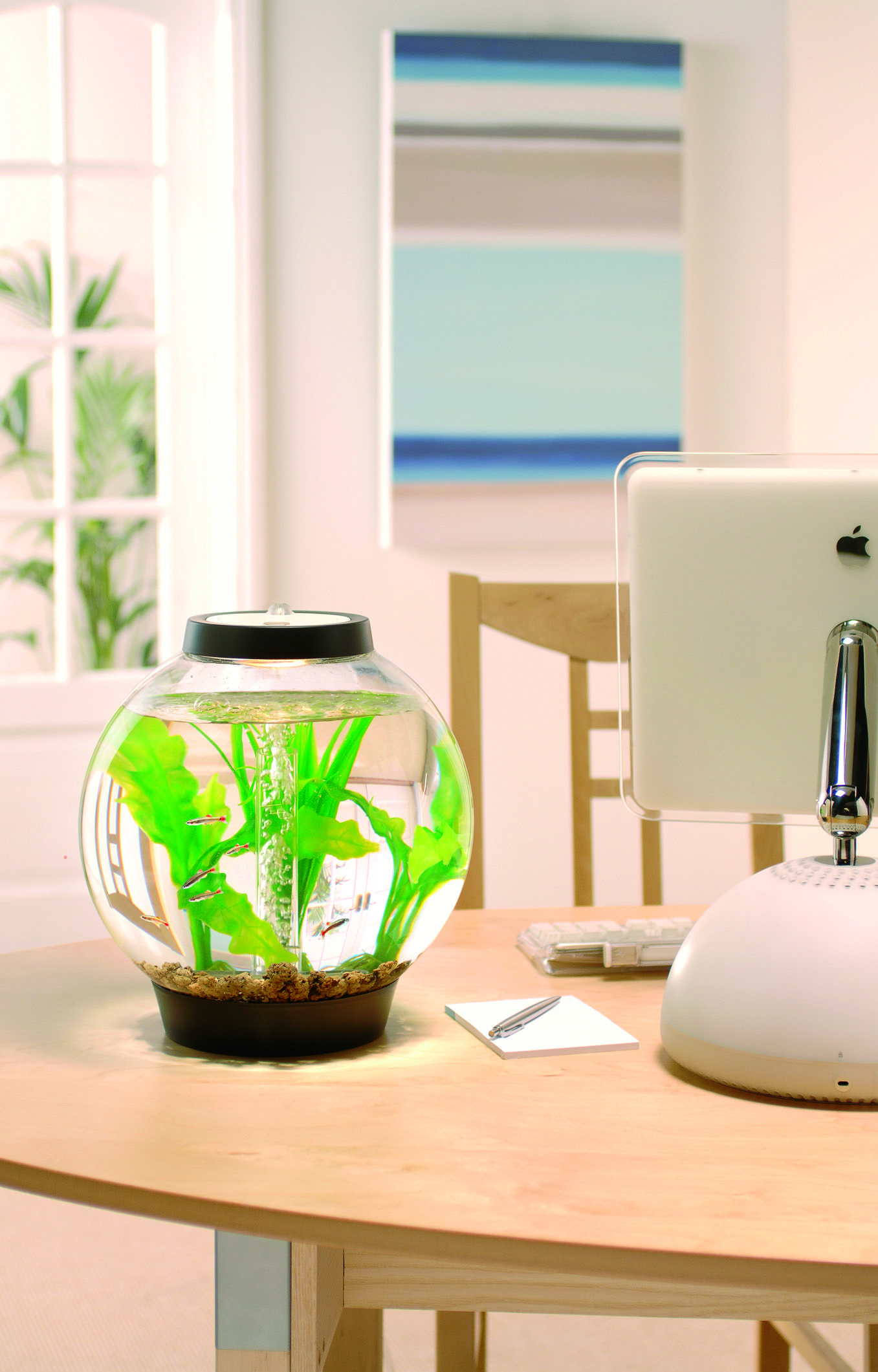 With a capacity of 15L the small and perfectly formed baby
