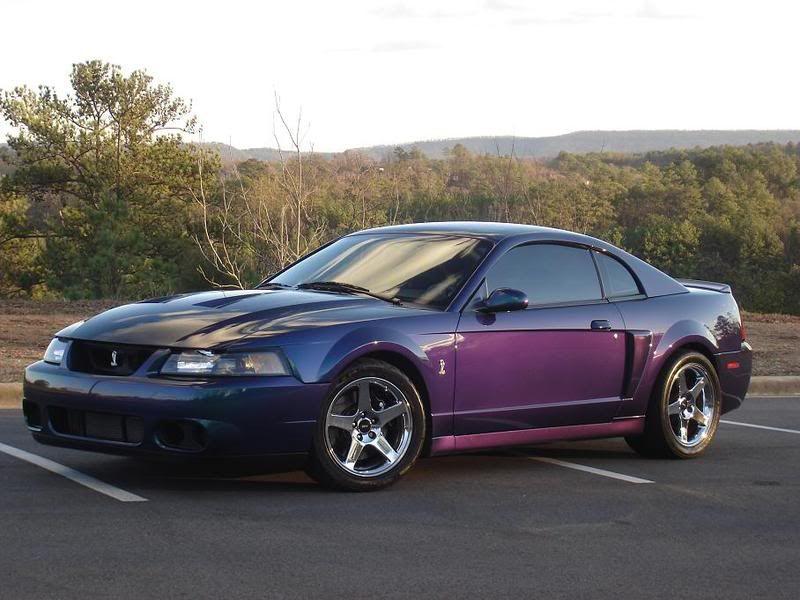 Dream Vehicle Ford Mustang Cobra Mustang Cars Mustang