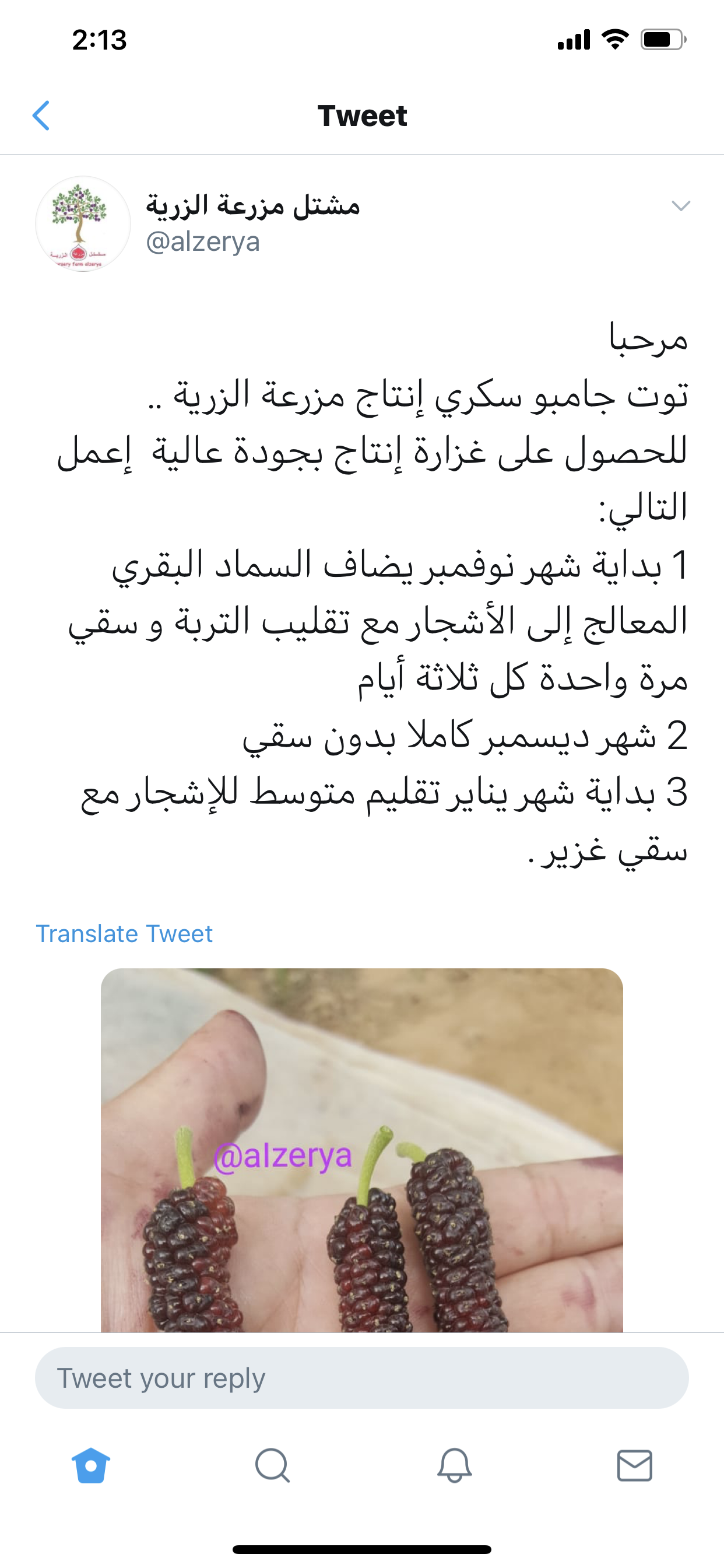 Pin By Maryam Alali On زراعه In 2020 Tweet