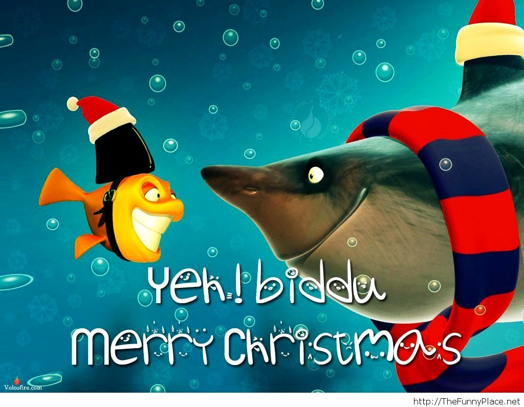Funny Merry Christmas Images Trick Funny merry christmas
