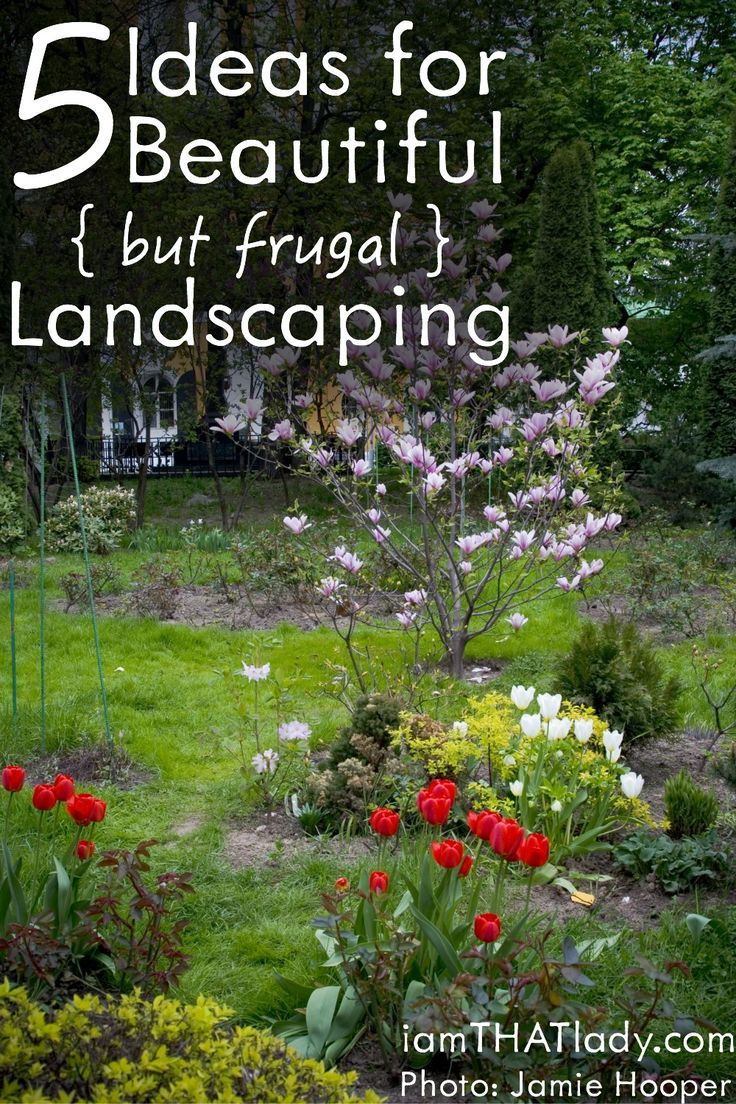 5 Ideas for Beautiful  but Frugal  Landscaping   Lauren Greutman. 5 Ideas for Beautiful  but Frugal  Landscaping   Curb appeal