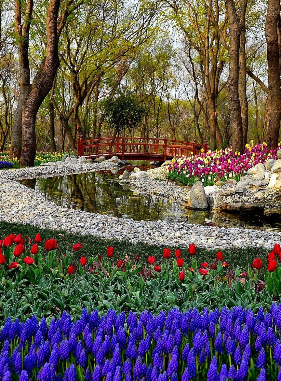 Photograph garden by Yilmaz Kendirli on 500px | Garden / Fields ...