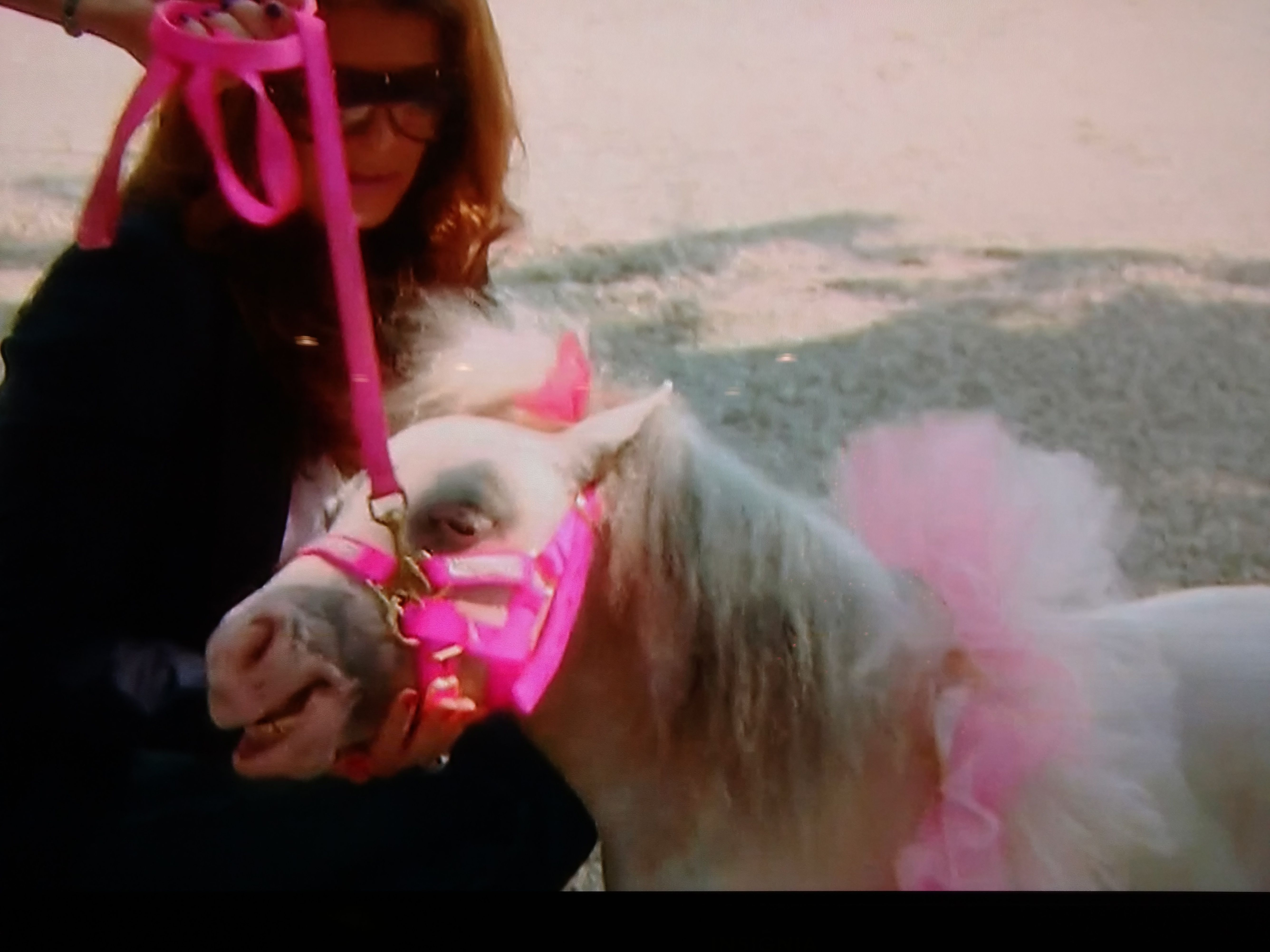 Horsing Around: Real Housewives of Beverly Hills Recap - The Naughty ...