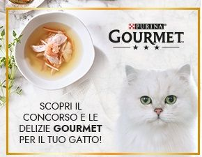 Concorso PetPassion vinci fornitura Gourmet