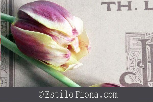Inspiración para decorar con flores y música.