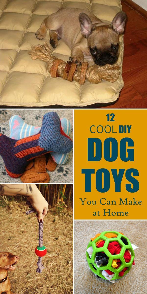 12 Cool Diy Dog Toys You Can Make At Home Diy Dog Toys Diy Dog