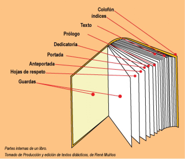 El libro por dentro y por fuera Infographic (con imágenes