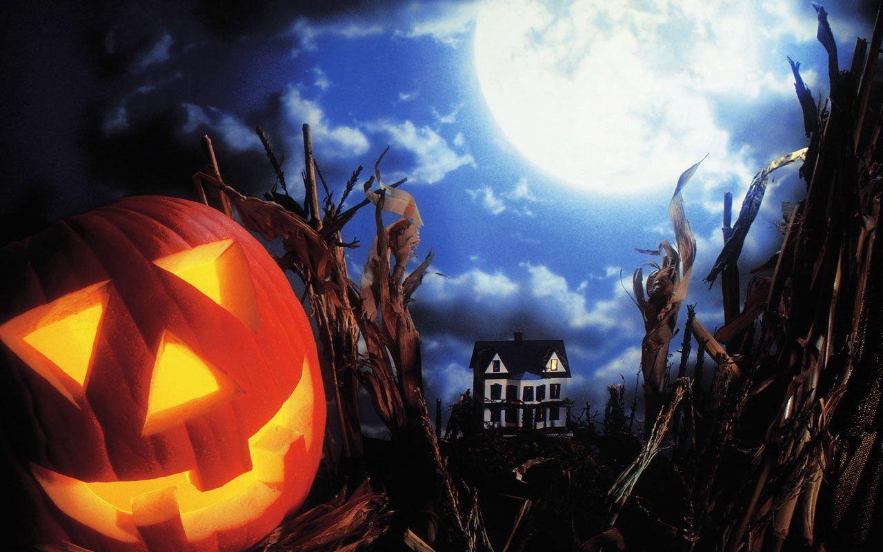 collection of cartoon halloween wallpaper on hdwallpapers 1024768 animated halloween wallpapers 35 wallpapers - Halloween Party Wallpaper