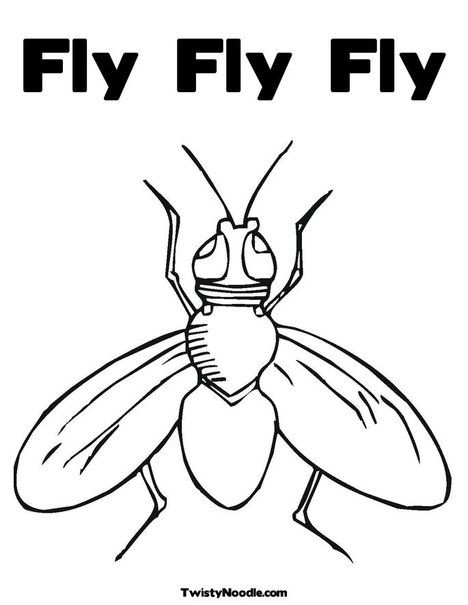 Fly Fly Fly Coloring Page Coloring Pages Animal Coloring Pages Cartoon Coloring Pages