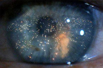 "Blade Runner - Eye reflecting the ""Hades"" landscape.  Harrison Ford as Rick Deckard"