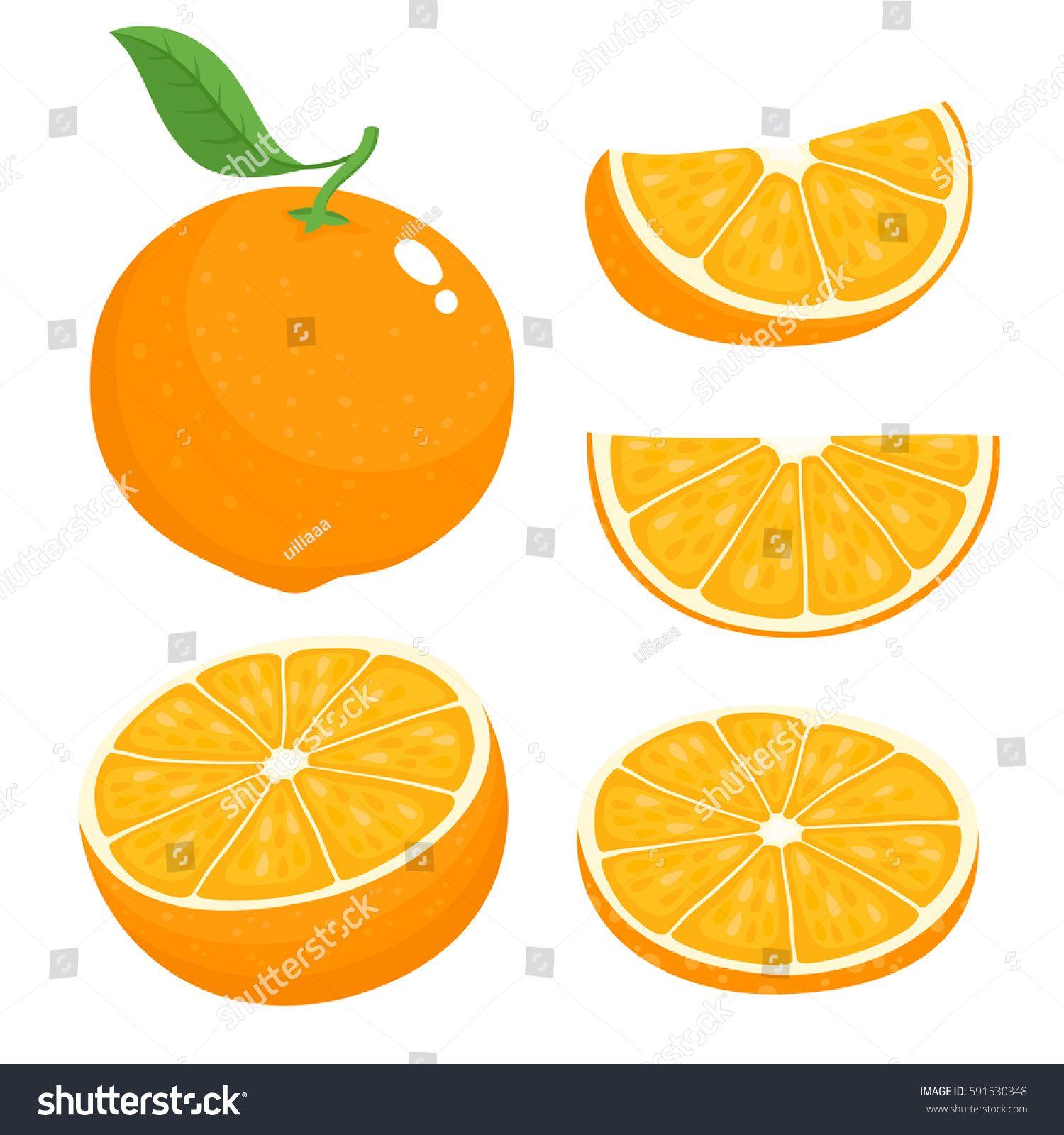 Bright Vector Set Of Colorful Half Slice And Segment Of Juicy Orange Fresh Cartoon Oranges On White Background Sponsored Affiliate Orange Vector Color