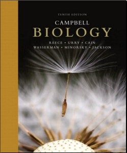 Campbell biology 10th edition pdf we are honored to present the campbell biology 10th edition pdf we are honored to present the tenth edition of campbell biology fandeluxe