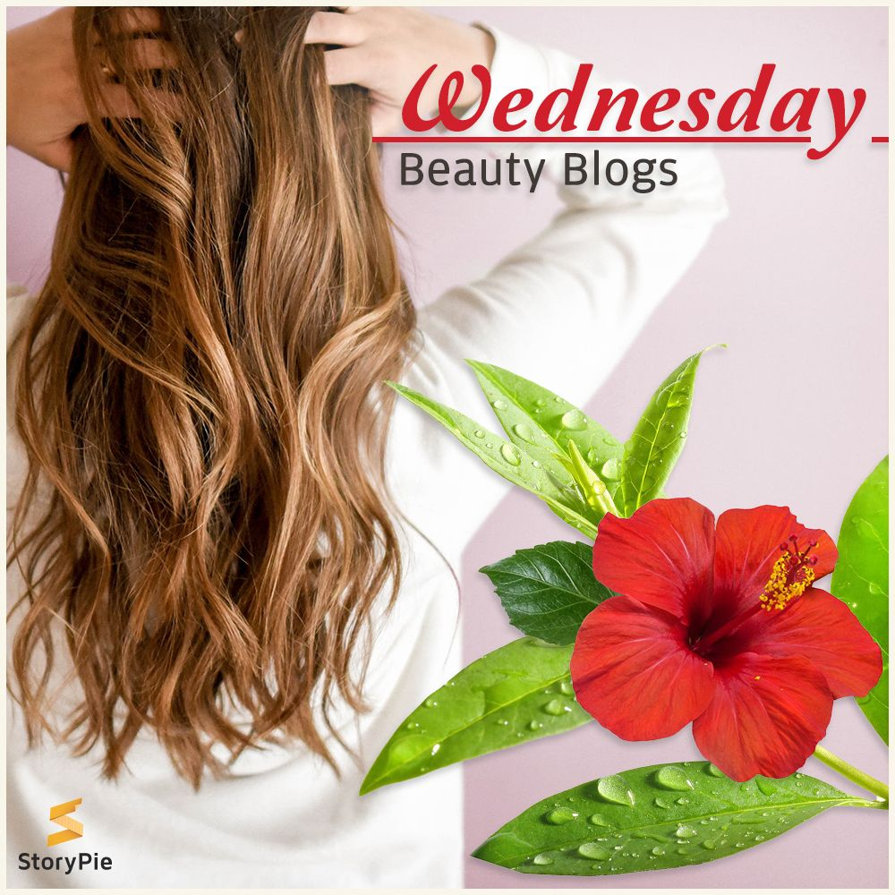 Boil Tea Tree Oil With One Hibiscus Flower For Silky And Shiny Hair Beauty Hacks Hair Teatree Hibiscus Beautyti With Images Beauty Blog Long Hair Styles Shiny Hair