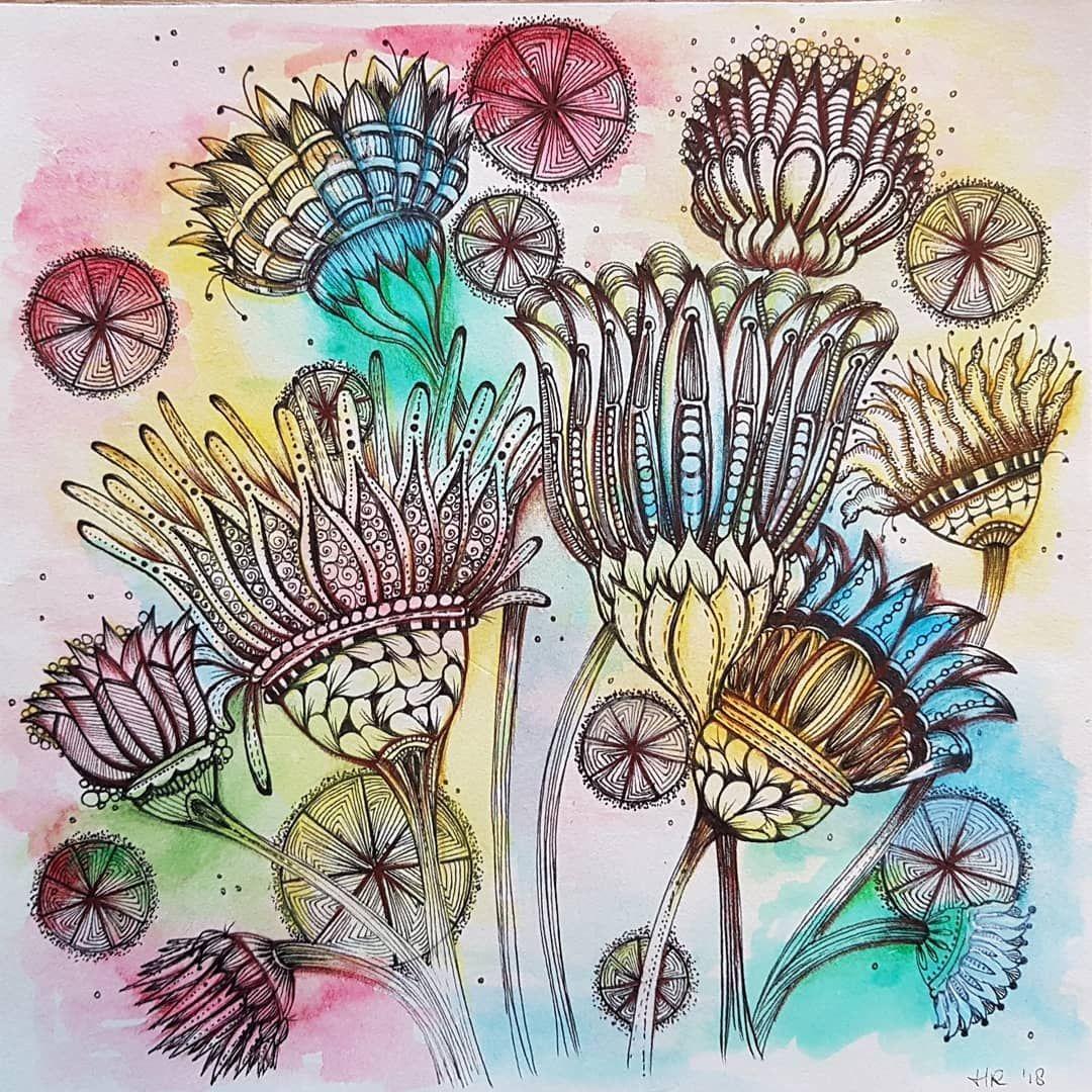 Lotusbloemen Fantasy Eniokenartclub Micron Watercolor Luminance Zentangle Art Art Club Zentangle