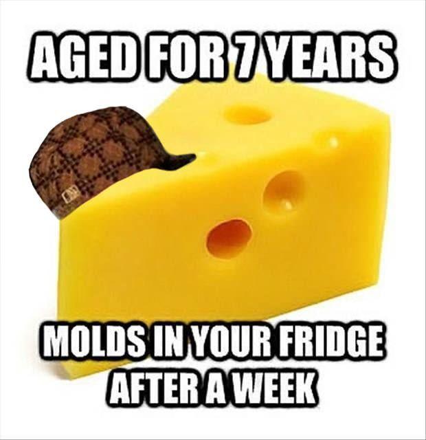 Scumbag Cheese
