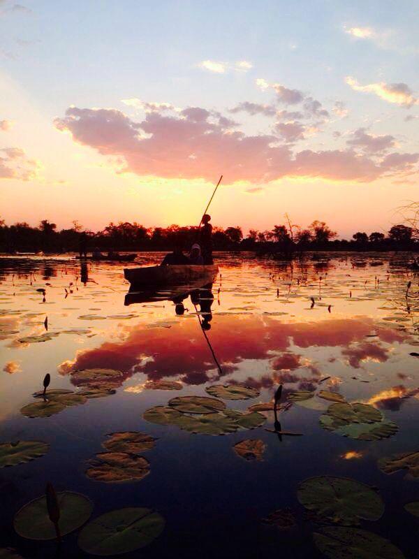 Afrika delta droom