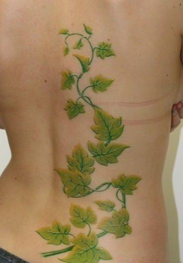 Poison Ivy Vine Tattoos Ivy tattoo