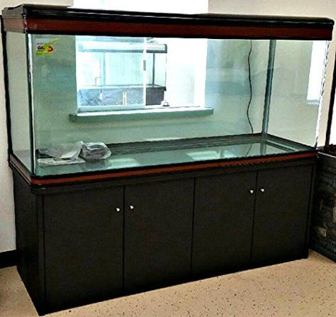 Aquarium 200 Gallon 72 Inch L Frameless All Glass Fish Tank With Black Storage Cabinet Lights Pump Filter Glass Fish Tanks Fish Tank Fish Supplies