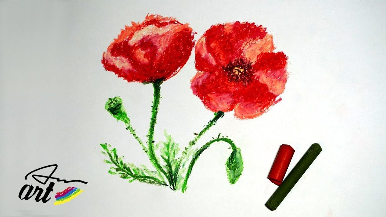 Flowers Drawing How To Draw Poppy Flowers With Oil Pastels Anart